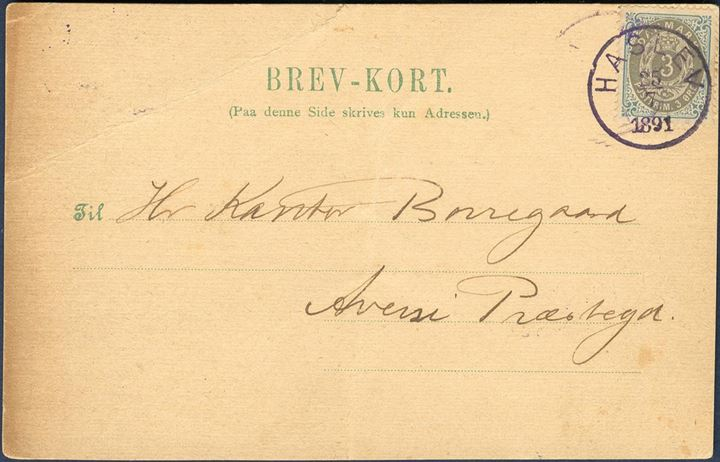 "Brev-Kort sent from Haslev to Aversi 25.7.1891 bearing a 3 øre bicolored IX printing, tied by CDS Lap VIa-2 ""HASLEV 25.7.1891"" in violet. Only recorded LAP VIa-2 Haslev on letter."